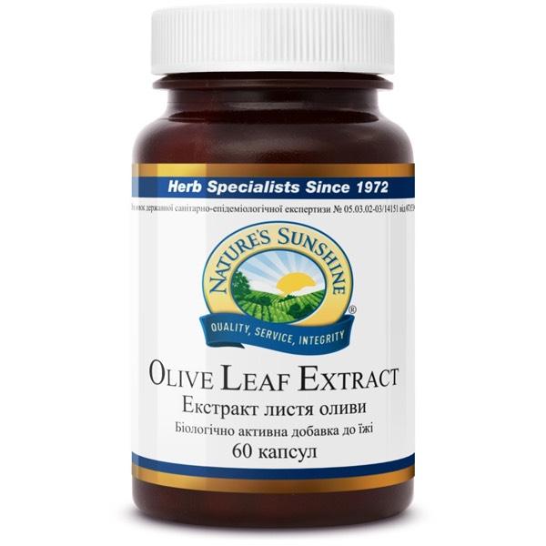 Экстракт листьев оливы | Olive Leaf Extract, фото 1