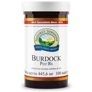 Репейник | Burdock