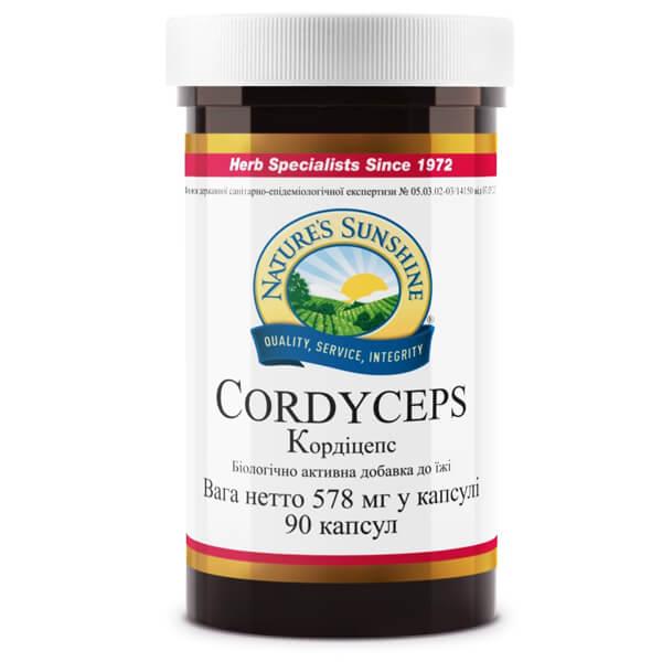 Кордицепс | Cordyceps, фото 1