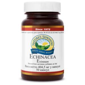 Эхинацея |  Echinacea